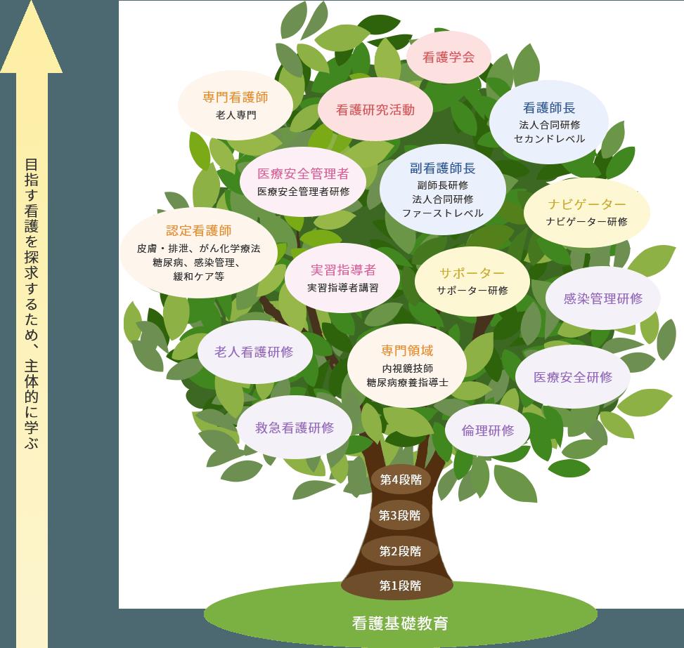 神戸海星病院 看護部キャリア開発のイメージ図